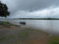 Jungle highway